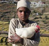 Kalo Pothi (the_black_hen)